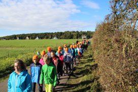 Die Kinder von Gruppe Orange laufen in Zweierreihen den Waldweg entlang
